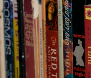 Buchrücken in einem Regal